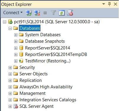 Mirror Database Server