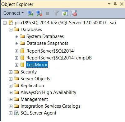 Primary Database Server