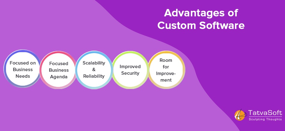 Advantages of Custom Software