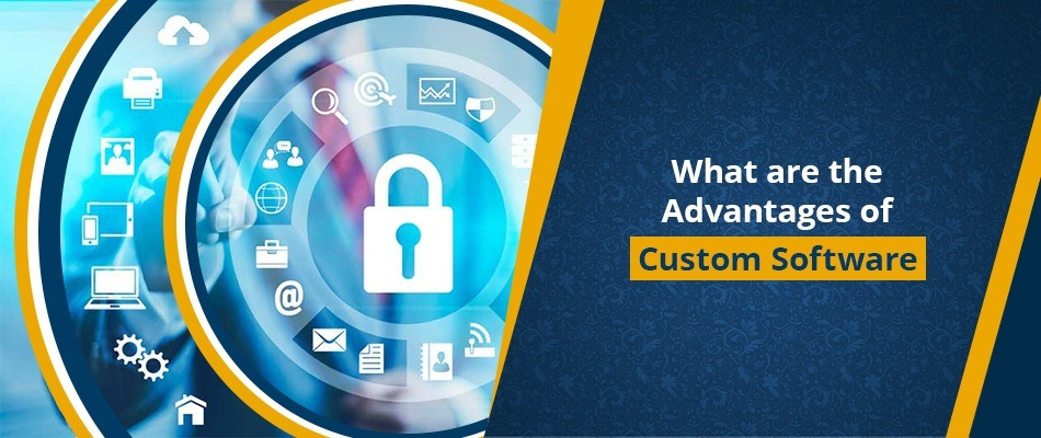 What are the Advantages of Custom Software