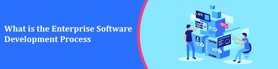 What is the Enterprise Software Development Process
