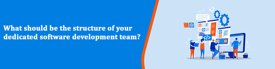 What should be the structure of your dedicated software development team?